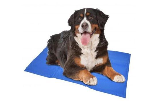 Duvo Koelmat Hond - Blauw - XL: 96 x 81 cm